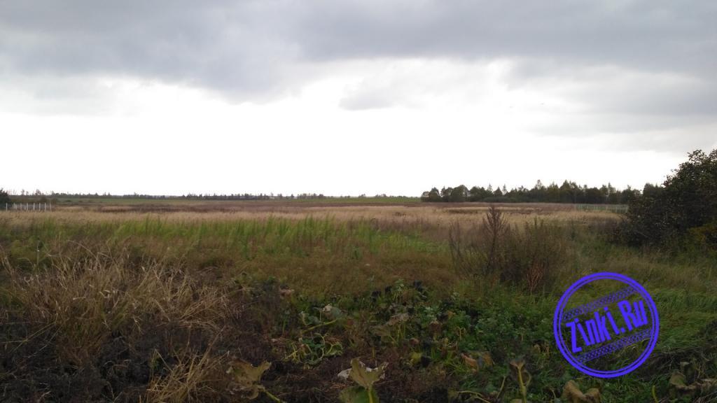 Продам земельный участок, 54 сот. Смоленск. Фото - 2