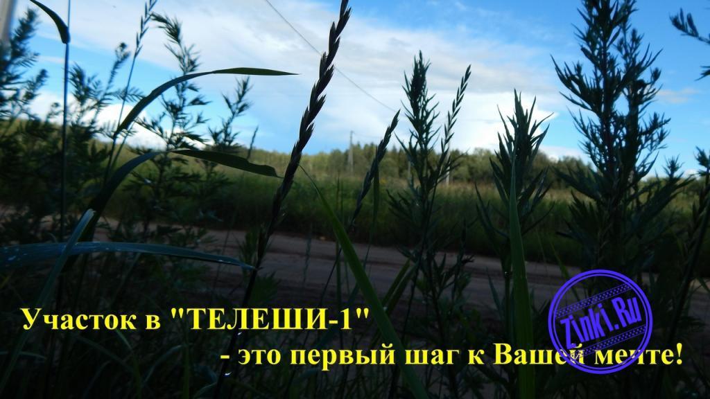 Продам земельный участок, 15 сот. Смоленск. Фото - 3