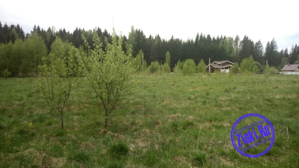 Продам земельный участок, 15 сот. Смоленск. Фото - 5