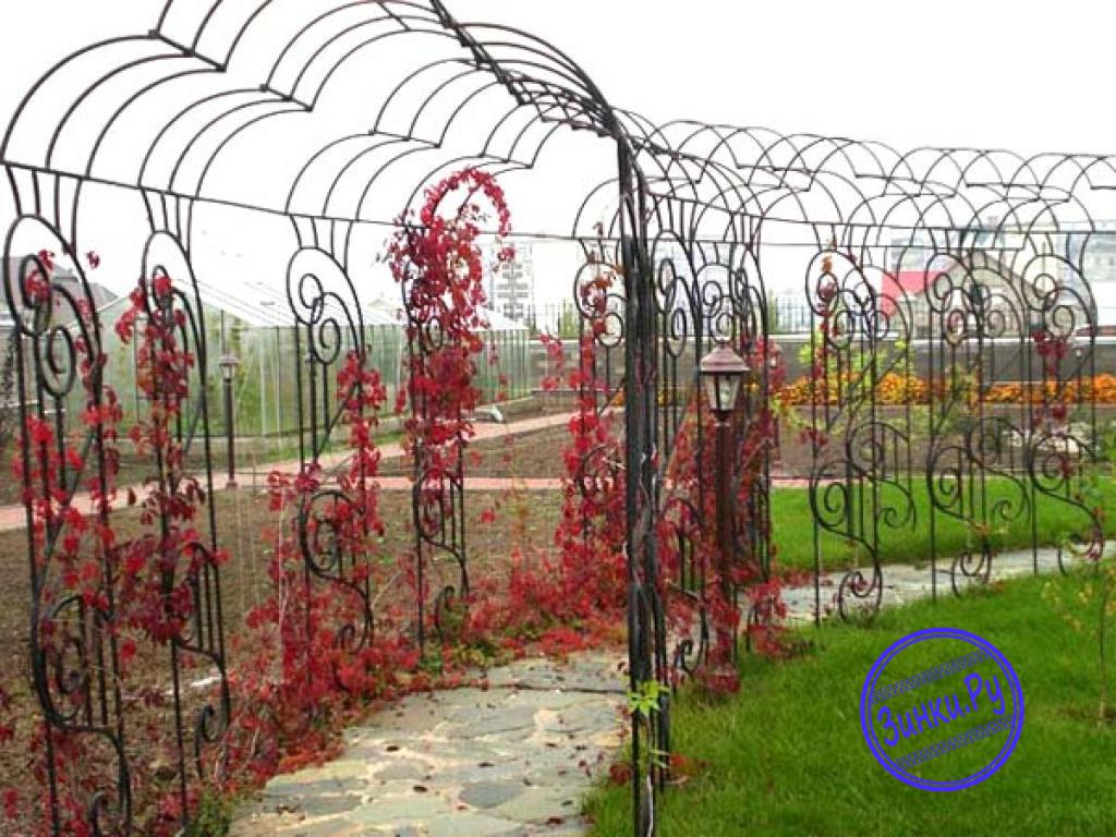 Арки, способные выдержать вес разросшихся растений. Москва. Фото - 7