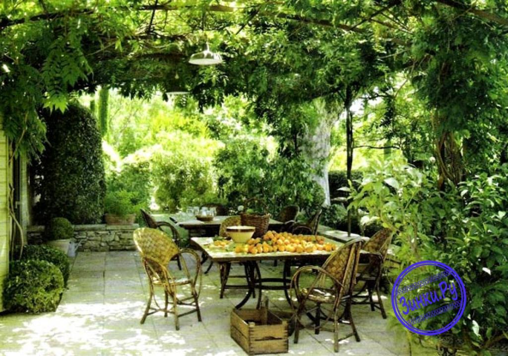 Арки, способные выдержать вес разросшихся растений. Лобня. Фото - 8