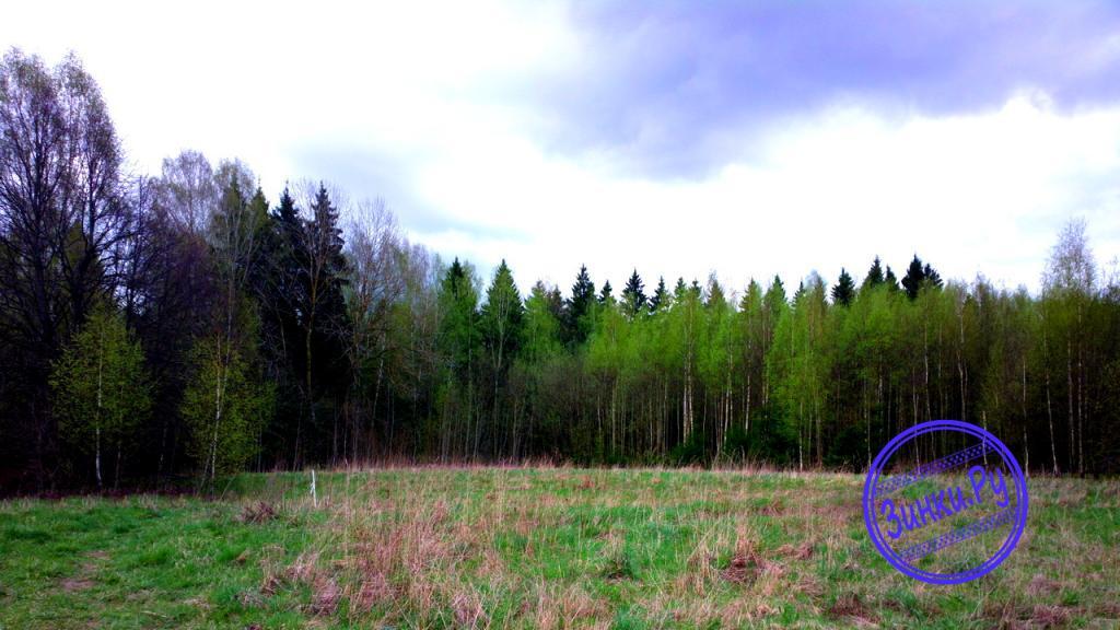 Продам земельный участок. Смоленск. Фото - 2