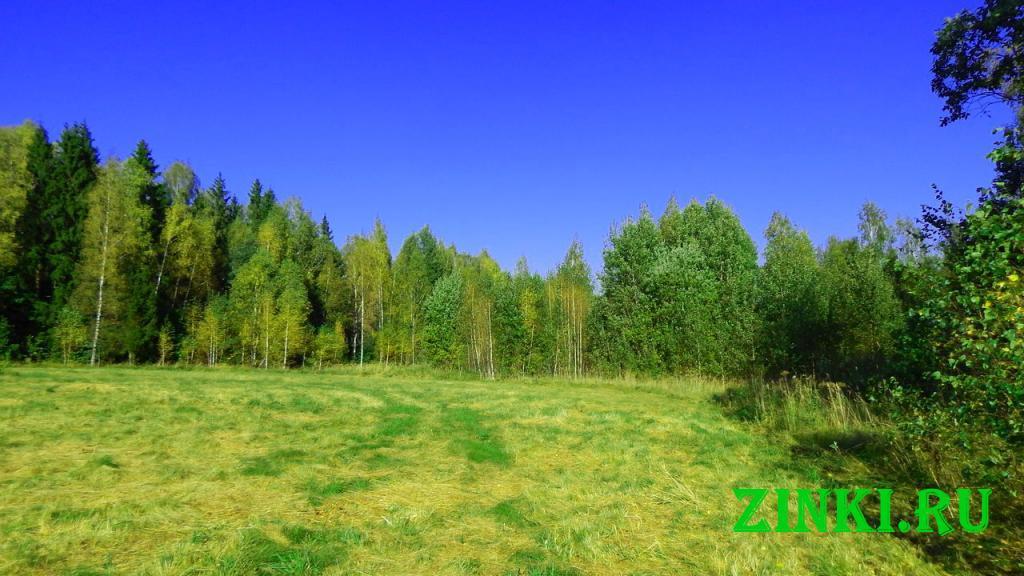 Продам земельный участок, 11.5 сот. Смоленск. Фото - 7
