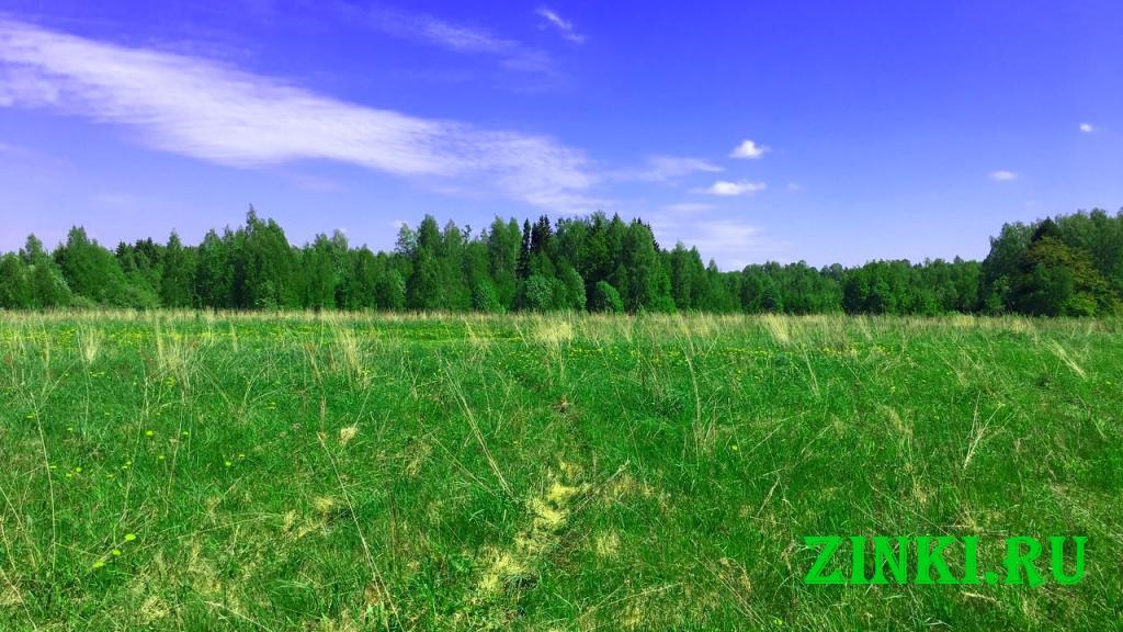 Продам земельный участок, 11.5 сот. Смоленск. Фото - 3