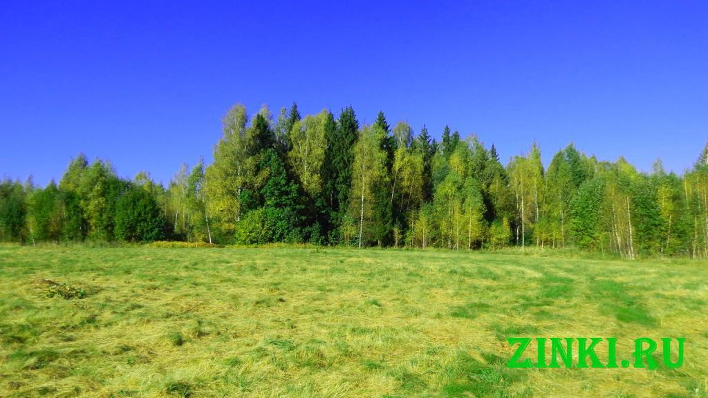 Продам земельный участок, 11.5 сот. Смоленск. Фото - 8