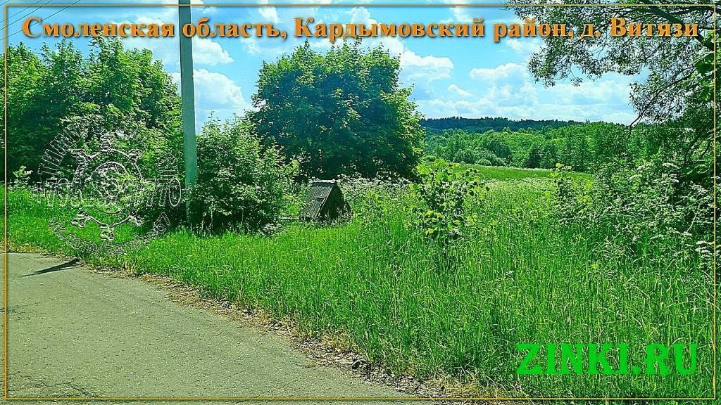 Продам земельный участок, 33 сот. Кардымово. Фото - 3