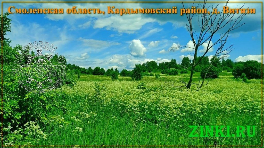 Продам земельный участок, 33 сот. Кардымово. Фото - 7
