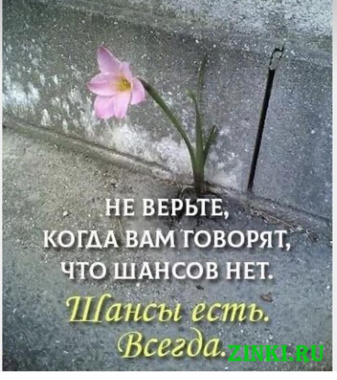Помощь потерпевшим (пострадавшим) от преступлений. Санкт-Петербург