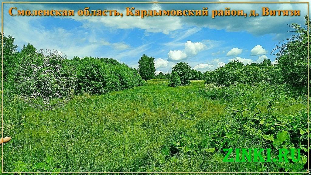Продам земельный участок, 33 сот. Кардымово. Фото - 4